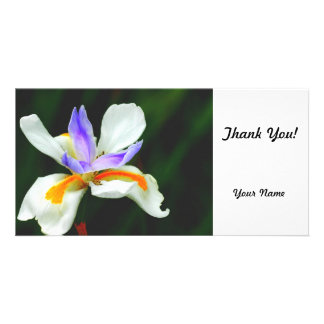 Iris Wild Fairy Customized Photo Card
