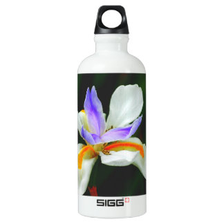 Iris Wild Fairy SIGG Traveler 0.6L Water Bottle