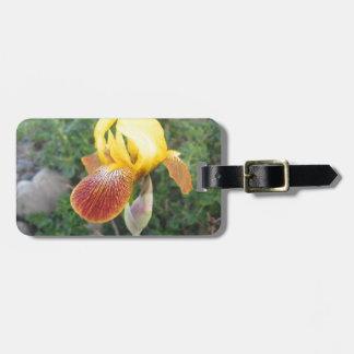 Iris Yellow Bearded Bag Tag