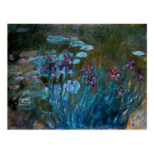 Irises and Water Lilies, Claude Monet Post Card