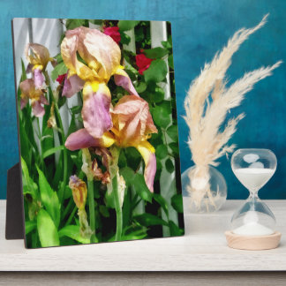 Irises By Picket Fence Plaque