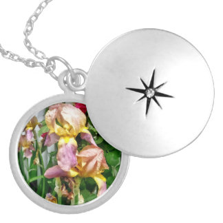 Irises By Picket Fence Silver Plated Necklace