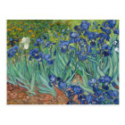 Irises by Van Gogh Postcards
