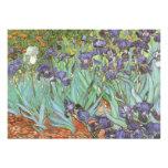 Irises by Vincent van Gogh Birthday Party