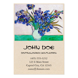 Irises by Vincent Van Gogh Pack Of Chubby Business Cards