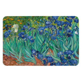 Irises by Vincent van Gogh Rectangle Magnets