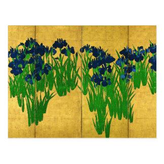 Irises on Gold Postcard