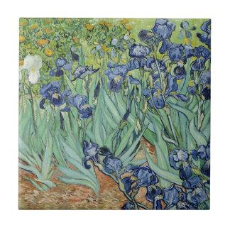 Irises Small Square Tile