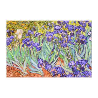 Irises Vincent Van Gogh Fine Art Gallery Wrapped Canvas