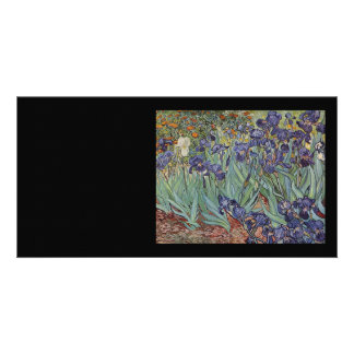 Irises - Vincent Willem van Gogh Photo Cards