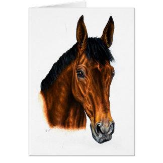 Irish Bay Horse Greeting Card