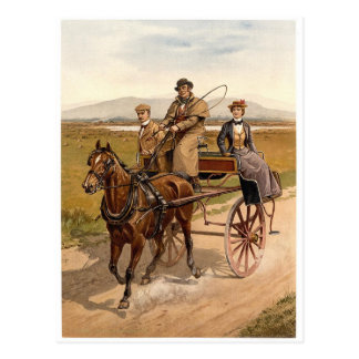 Irish Cart and Horse Postcard