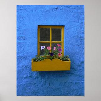 Irish Cottage Windowbox Poster