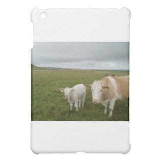 IRISH COWS COVER FOR THE iPad MINI