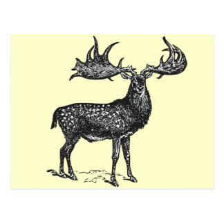 Irish Deer Postcard