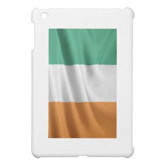 Irish Flag iPad case