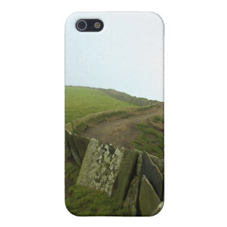 Irish Landscape iPhone 5/5S Covers