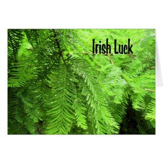 Irish Luck Card in Green
