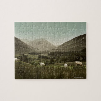 Irish Mountain Scene Jigsaw Puzzle