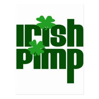 Irish Pimp Postcard