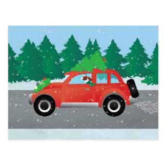 Irish Red and White Setter Driving Christmas Car Postcard