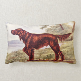 Irish Setter 1900 Illustration of Sporting Dog Lumbar Pillow