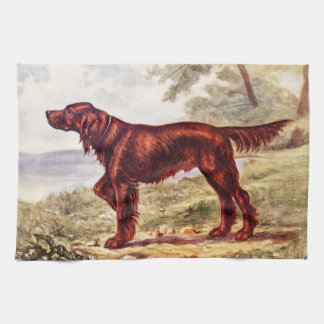 Irish Setter 1900 Illustration of Sporting Dog Tea Towel
