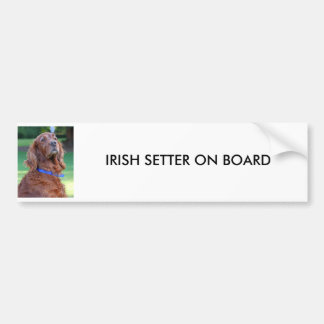 Irish Setter dog beautiful photo, custom gift Bumper Sticker