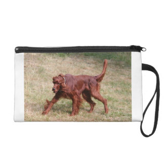 irish setter full 3 wristlet