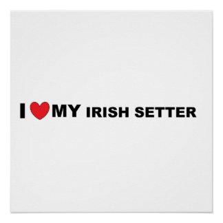 irish setter love poster