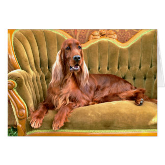 Irish Setter Sophie Card