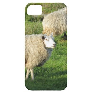 Irish Sheep Barely There iPhone 5 Case