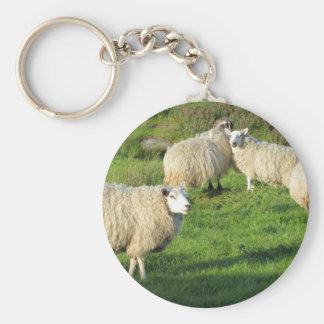 Irish Sheep Key Ring