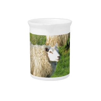 Irish Sheep Pitcher