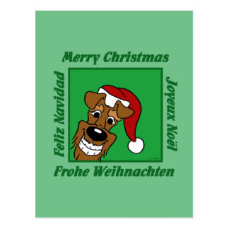 Irish Terrier Christmas Postcard