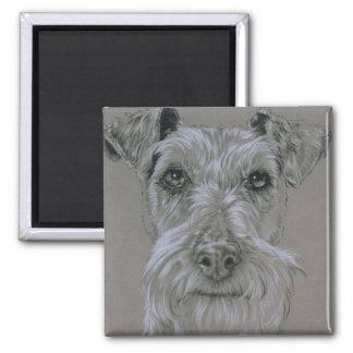 Irish Terrier Magnet