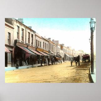 Irish Village Poster