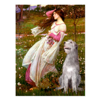 Irish Wolfhound 6 - Windflowers Postcard
