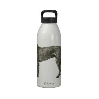 Irish wolfhound drinking bottle