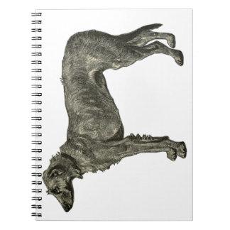 Irish wolfhound note books