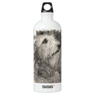 Irish Wolfhound perfect pose SIGG Traveller 1.0L Water Bottle