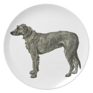 Irish wolfhound plates