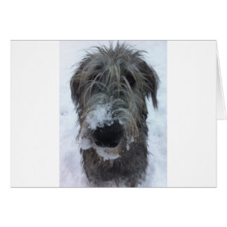 irish wolfhound playing in the snow greeting card