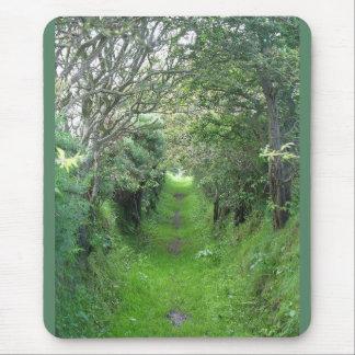 Irish Woodlands in Ireland Mouse Pad