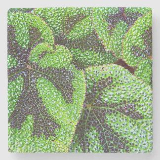 Iron Cross Begonia Floral Stone Coaster
