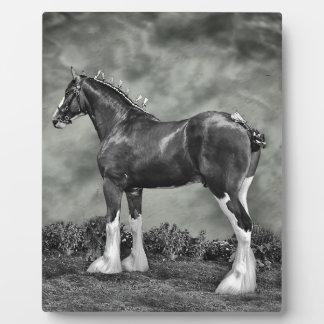 Iron Horse Steele Photo Plaque