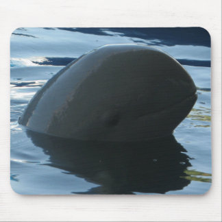 Irrawaddy Dolphin Peek-A-Boo Mouse Pad