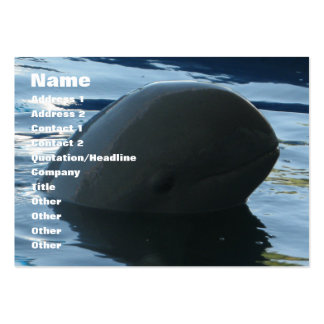 Irrawaddy Dolphin Peek-A-Boo Pack Of Chubby Business Cards