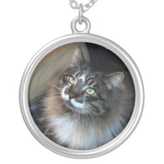 Irresistible Cat Zorro Necklace