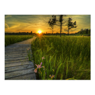 Irwin Prairie Sunset Postcard